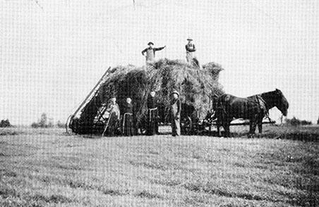 Brothers Haying, 1910, Pulaski, WI